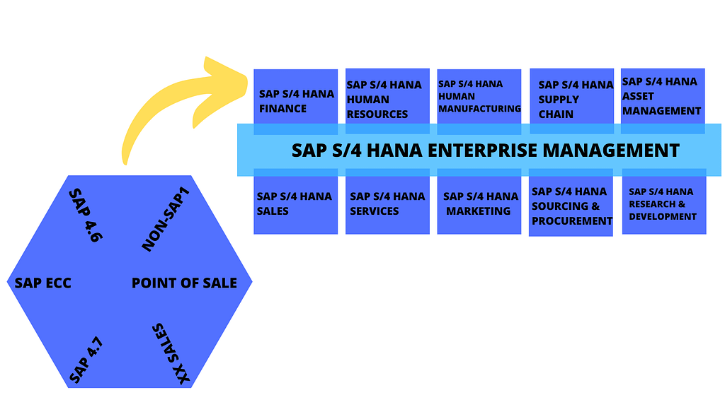 SAP S/4 HANA ENTERPRISE MANAGEMENT