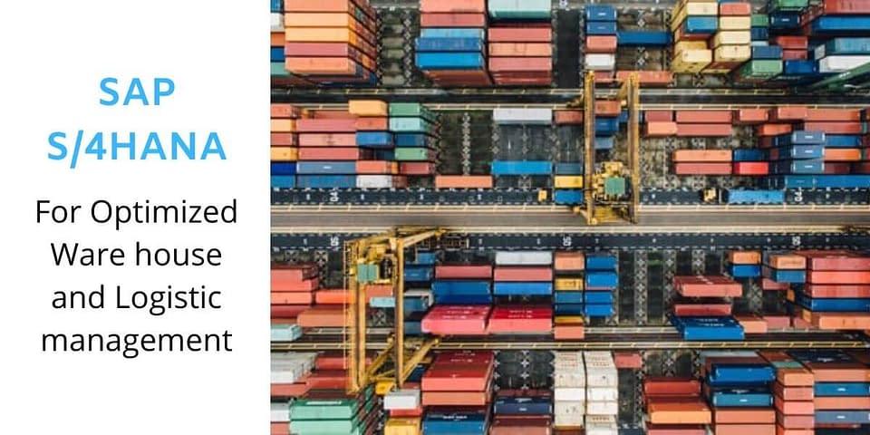 sap s/4 hana in logistic industry
